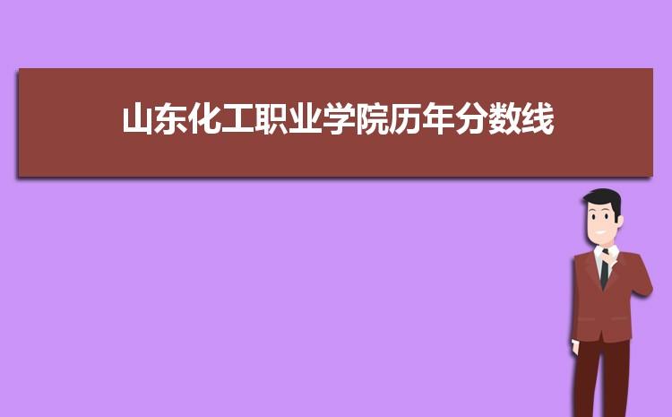 山东化工职业学院历年高考录取分数线一览表 附文理科投档线