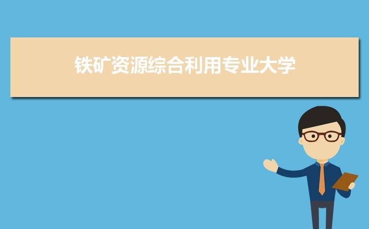 2021年中国铁矿资源综合利用专业全国大学排名完整最新排名