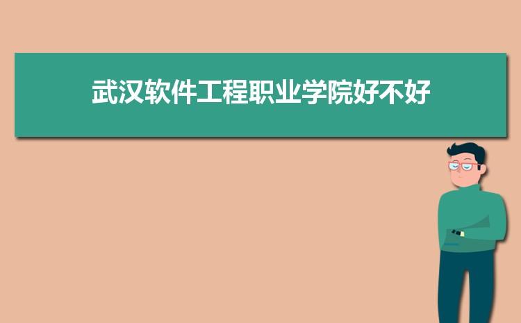 武汉软件工程职业学院好不好,多少分可以上附真实评价