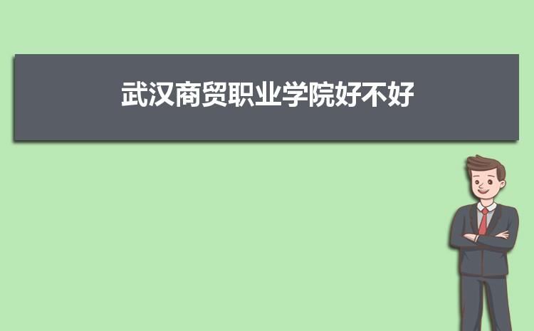 武汉商贸职业学院好不好,多少分可以上附真实评价