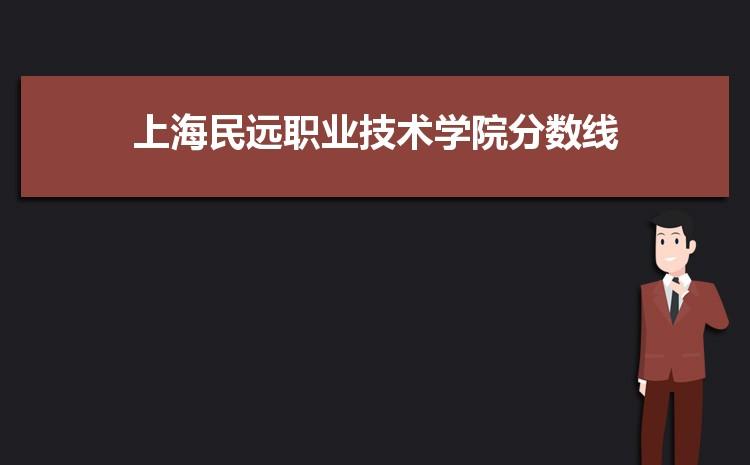 上海民远职业技术学院历年高考录取分数线一览表 附文理科投档线