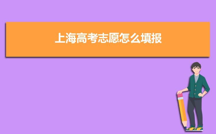 2021年上海高考志愿怎么填报,可以填报几个学校和专业