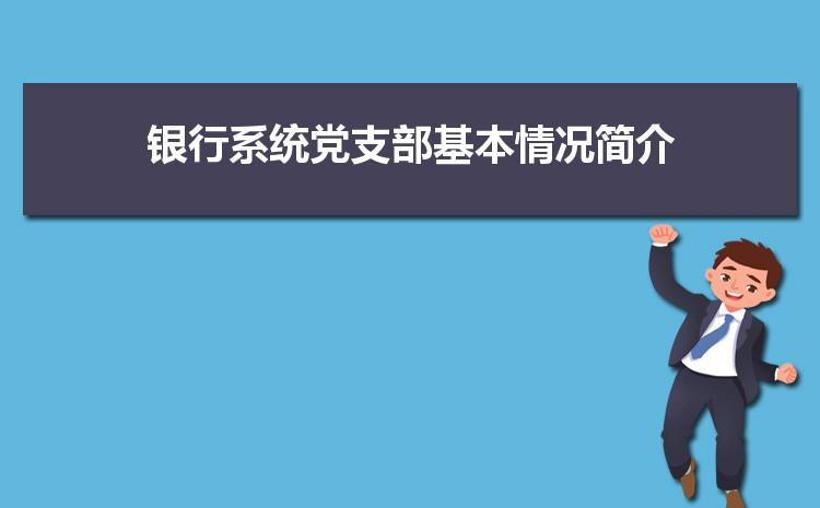 银行系统党支部基本情况简介精华篇